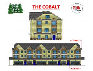cobalt brochure front 1 orig orig